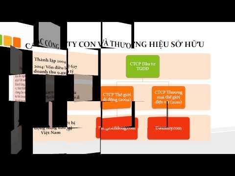 SlideArt thiết kế Slide Powerpoint chuyên nghiệp - Phân tích Cty Thế Giới di động