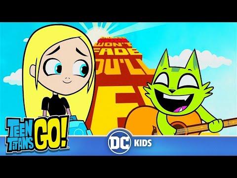 Teen Titans Go! En Español | Desvanecido (Beast Boy)