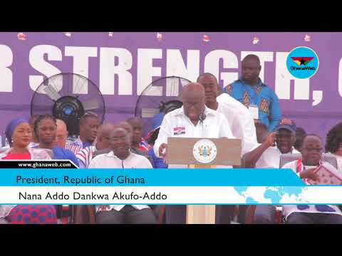 Violent conduct of party 'vigilante groups' caused by joblessness – Akufo Addo