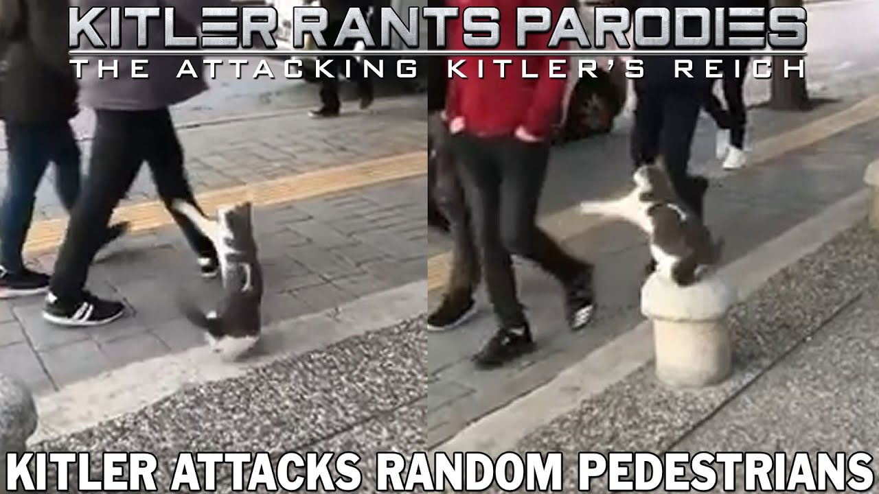 Kitler attacks random pedestrians