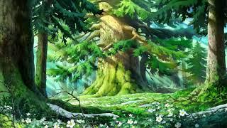 지브리 애니메이션 OST 피아노 모음 (Ghibli Animation OST Piano Collection) [공부 할 때 듣는 음악]