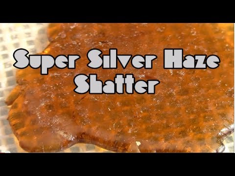 CSTV. Concentrate Review : Fire Type Extracts - Super Silver Haze NugRun Shatter