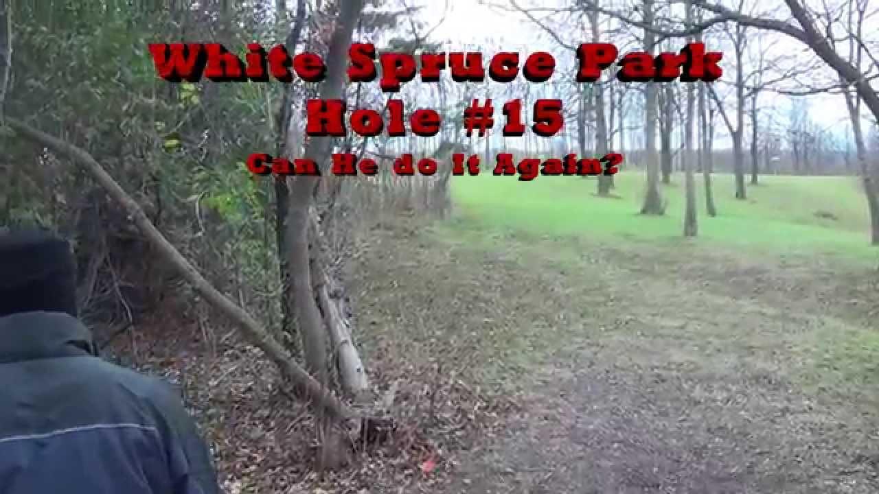 White spruce park