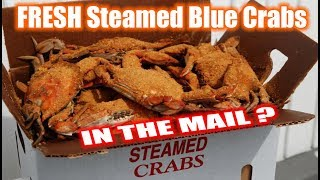 i-got-fresh-steamed-maryland-blue-crabs-online-what-are-we-eating-the-wolfe-pit