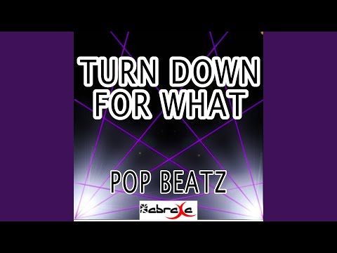 Turn Down for What (Instrumental Version)
