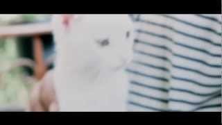 Canon 550D  Test  Directed by Mohamed Habib.mp4