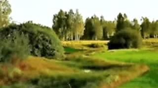 ГАЛИНА   ШЕВЕЛЁВА  Я МАХА.avi
