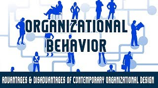 Organisational Structure |Advantages & Disadvantages of Contemporary Organizational Design |Part 13B