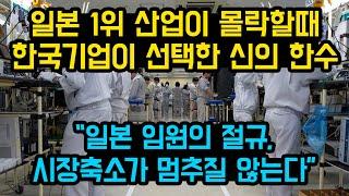 일본1위-산업이-몰락할때-한국이-선택한-소름돋는-신의-한수-일본-임원의-절규-시장축소가-멈추질-않는다