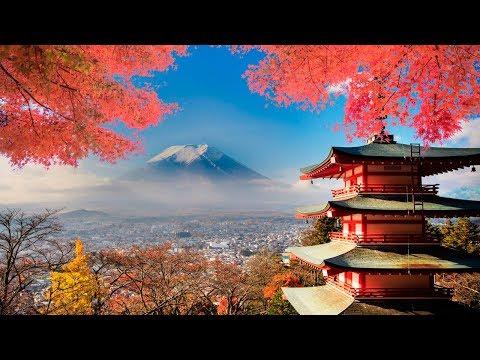 Японские мобильные телефоны, интернет-магазин японских