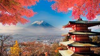 ЯПОНИЯ. ЯПОНСКАЯ КУХНЯ. СУШИ,РОЛЛЫ,САШИМИ.JAPAN.JAPANESE MEALS.