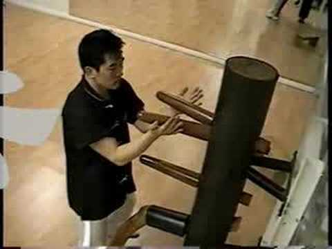 Wing Chun Wooden Dummy 116 Styles - Master Carlos Lee