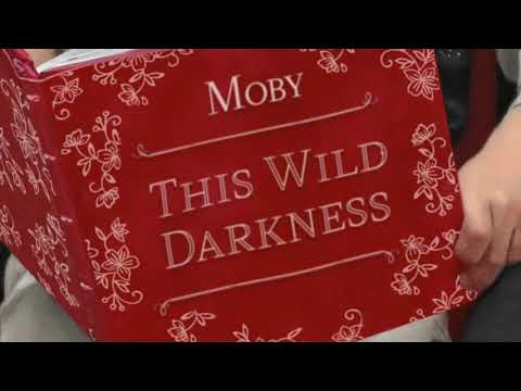 Moby - This Wild Darkness (Edit)