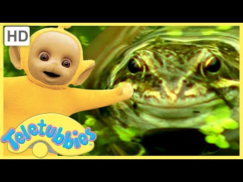 ★Teletubbies English Episodes★ Frogs ★ Full Episode - HD (S09E212)