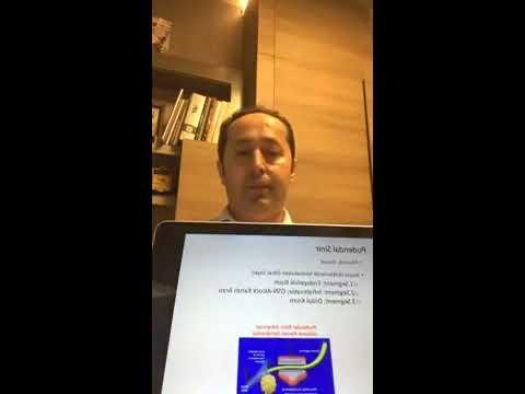 Endometriozis ve Pelvik Ağrı - Doç. Dr. Taner Usta