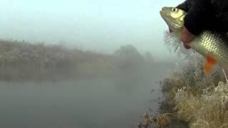 видео Как и какая рыба клюет в ноябре месяце