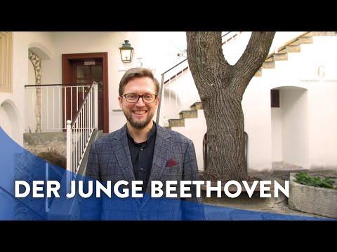 Wie Haben Seine Frühen Jahre Den Musiker Beethoven Geprägt?
