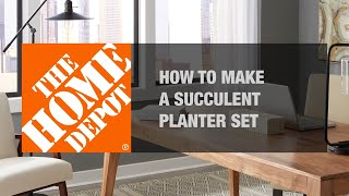 DIY Succulent Planter | Small Garden Ideas | The Home Depot