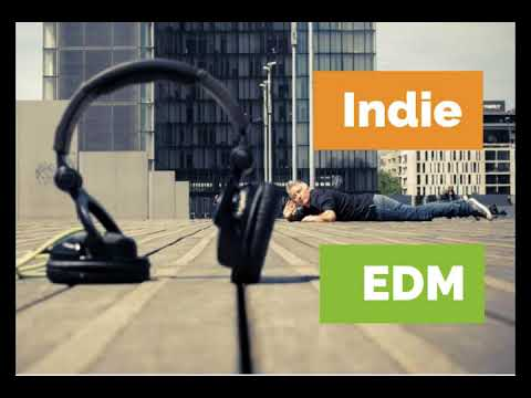 INDIAN ELECTRONIC MUSIC - INDIE EDM