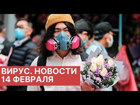 Коронавирус. Новости сегодня (14.02.2020). Новости Китая 14 февраля. Новости о Китайском вирусе