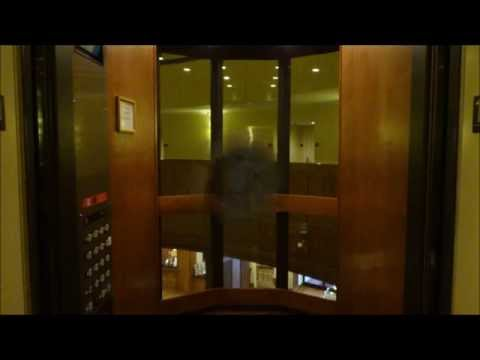 Awesome Custom Dover Impulse Traction Scenic Elevators at Park Vista Hotel in Gatlinburg, TN.