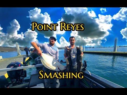 Point Reyes Smashing Ling Cod And  Catch Bonus.