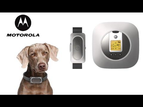 Motorola Wireless Fence 25 From Binatone Youtube