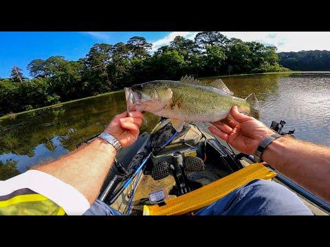 LWWJ Event #4 - Lake Raven | Kayak Bass Fishing Tournament