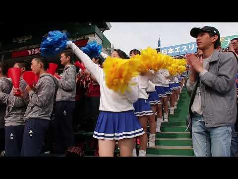 ★習志野高校★ ダンスチアガール ブラスバンド 美爆音甲子園 高校野球