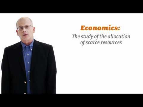 "Saul Levmore Asks ""Why is Economics Relevant?"""