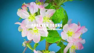 Sagi Kariv Ft. Chen Aharoni - Forever Young