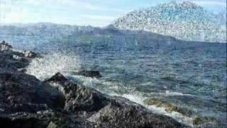 Giresun-giresun,2008,resimler,kiraz,kale,ada,yesil,beyaz,osman aga,giresun sahil yolu