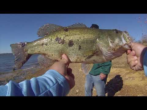 Caught My PB Bank Fishing Lake Grapevine