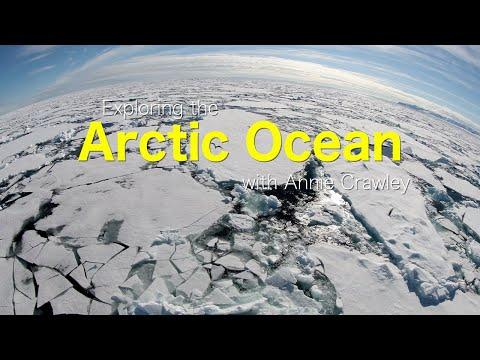 Explore the Arctic Ocean with Annie Crawley Planet Ocean Book
