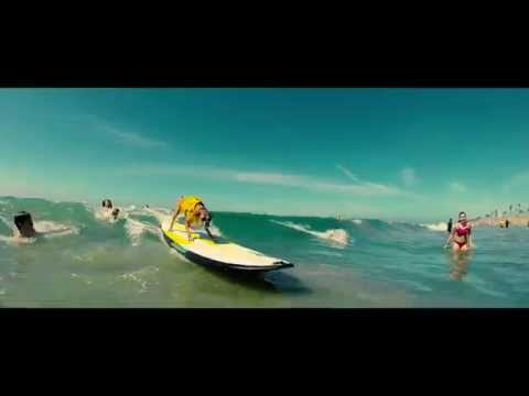[Unleashed By Petco] Surf City [Surf Dogs 2015]