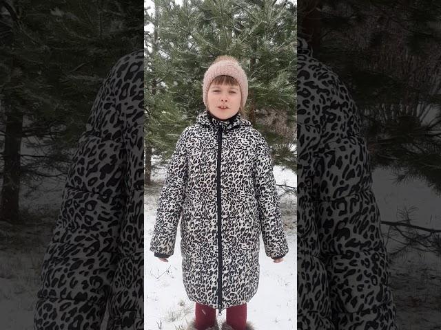 Изображение предпросмотра прочтения – ИринаАкшонова читает произведение «Снежок» Ф.И.Тютчева