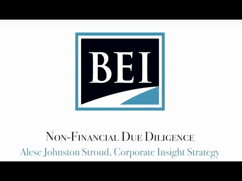 BEI CIS Non Financial Due Diligence