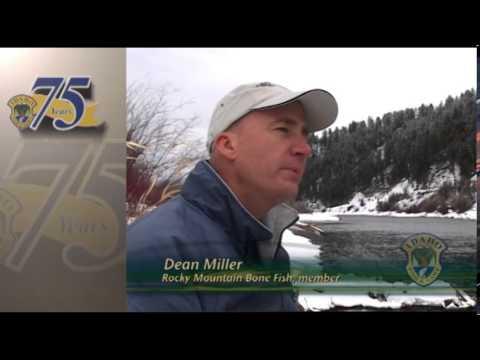 Catch: Mountain Whitefish