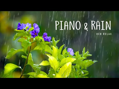 Rain Sounds & Relaxing Music 24/7 - Piano Music, Sleep, Study, Yoga, Stress Relief, Meditation