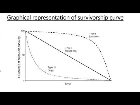 SURVIVORSHIP CURVES | TYPES AND EXAMPLES