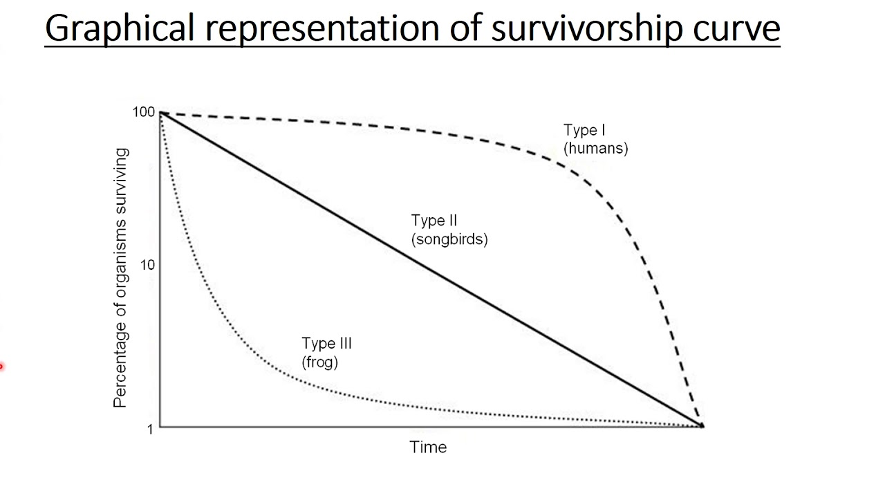 Survivorship curves types and examples youtube survivorship curves types and examples ccuart Image collections