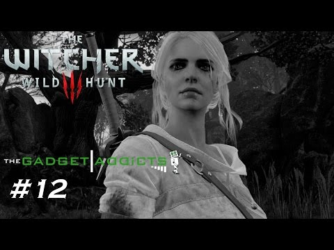 King Of Wolves/Family Matters || The Witcher 3: Wild Hunt Walkthrough || Part 12 || PlayStation 4