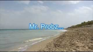 Mr. Probz - Waves (Robin Schulz Radio Edit) - Lyrics