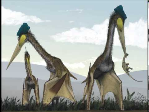 David Cagle - Quetzalcoatlus (children