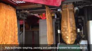 Fully automatic weighing, packing and palletizing line for seed potatoes