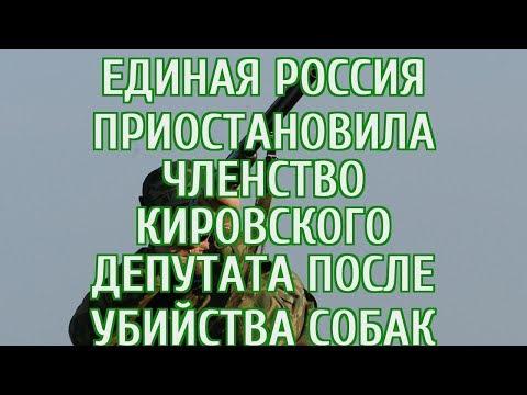 🔴 «Единая Россия» приостановила членство кировского депутата после убийства собак
