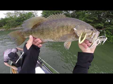 Montreal Fishing 2017 St. Lawrence River