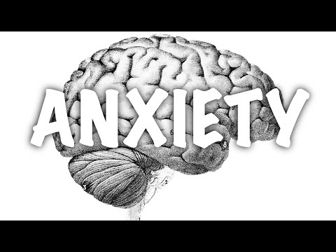 """""""It's All In Your Head"""" - The Science Of Anxiety (Knowledge Box #5)"""