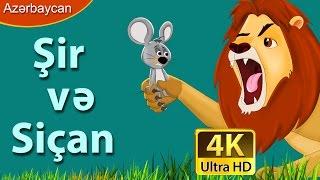 Şir və Siçan - Azerbaycan Çizgi Filmleri - Uşaqlar üçün İngilis Altyazılı hekayələr - 4K Ultra HD