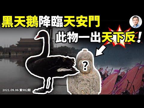 黑天鹅降临天安门广场,金融、宣传、军事都有反覆,粗大事的节奏?此物一出天下反!(文昭谈古论今20210906第982期)